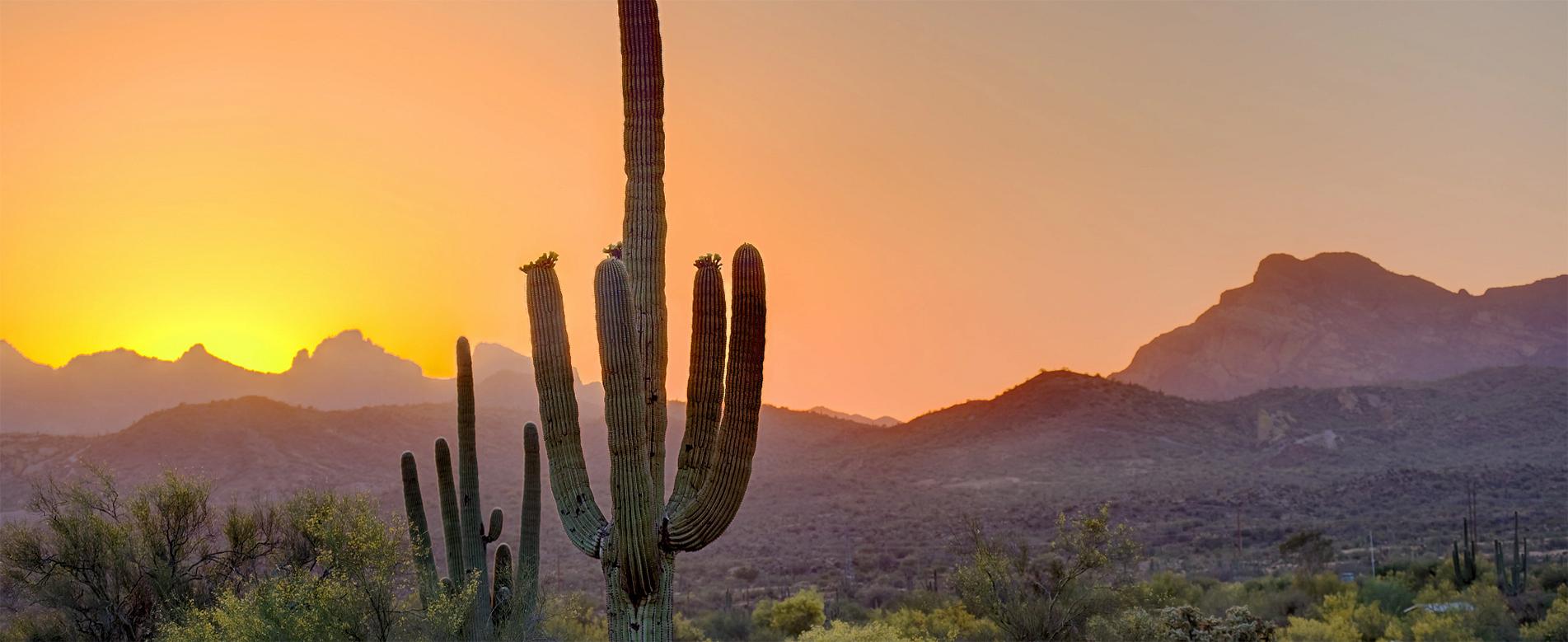 Canyon Ranch Wellness Resort Tucson, Arizona